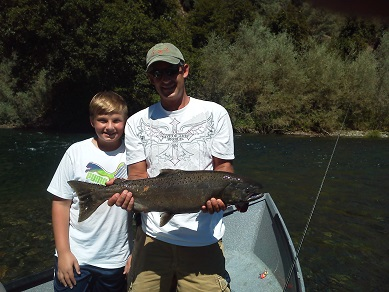 trout fishing sacramento river