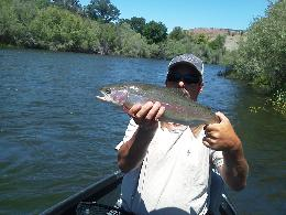 Gregs Steelhead Lower Sacramento River Fly Fishing