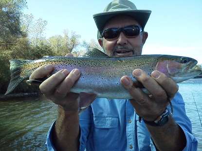 sacramento fly fishing guides