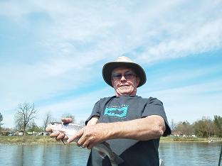 sacramento river trout