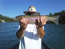 Trout_fly_fishing_Sacramento_River