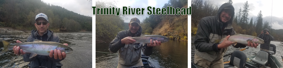 trinity-river-steelhead